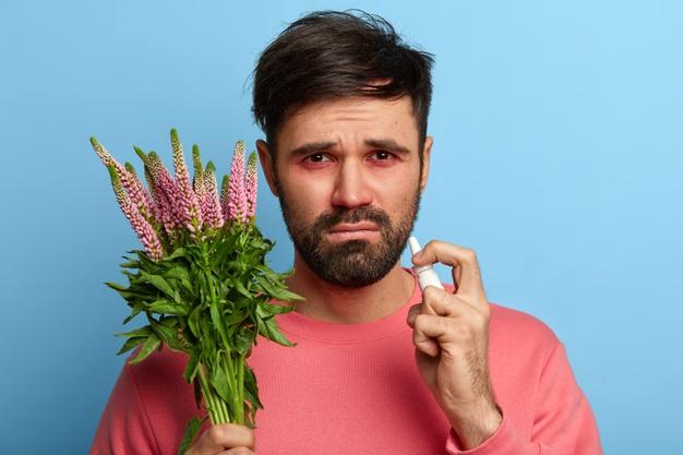 Plantas de interior que no provocan alergias
